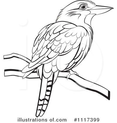 Kookaburra clipart Kookaburra Lal Perera #1117399 Kookaburra