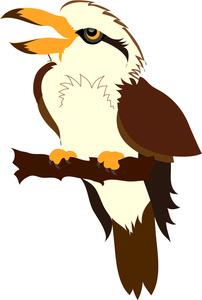 Kookaburra clipart This Clipart Panda Free clipart