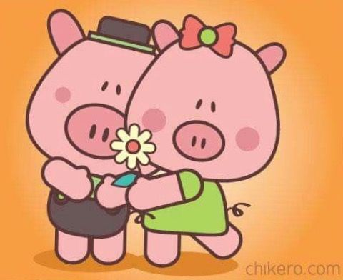 Kopel clipart pig 198 on about images PIG