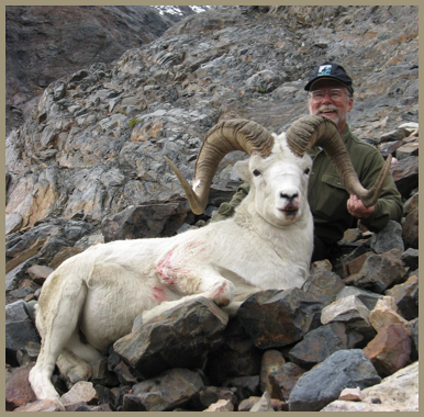 Kopel clipart sheep Dall $19 The 500 2018