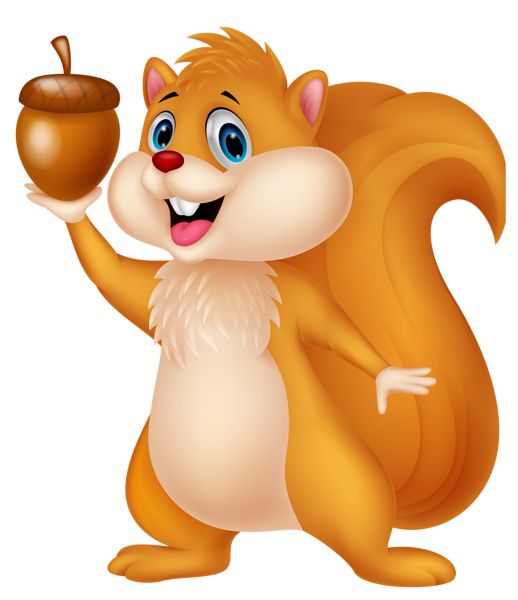 Kopel clipart squirrel Best about 70 images Acorn