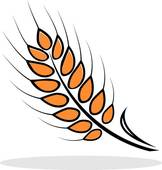 Korn clipart · Wheat Clip Royalty Wheat