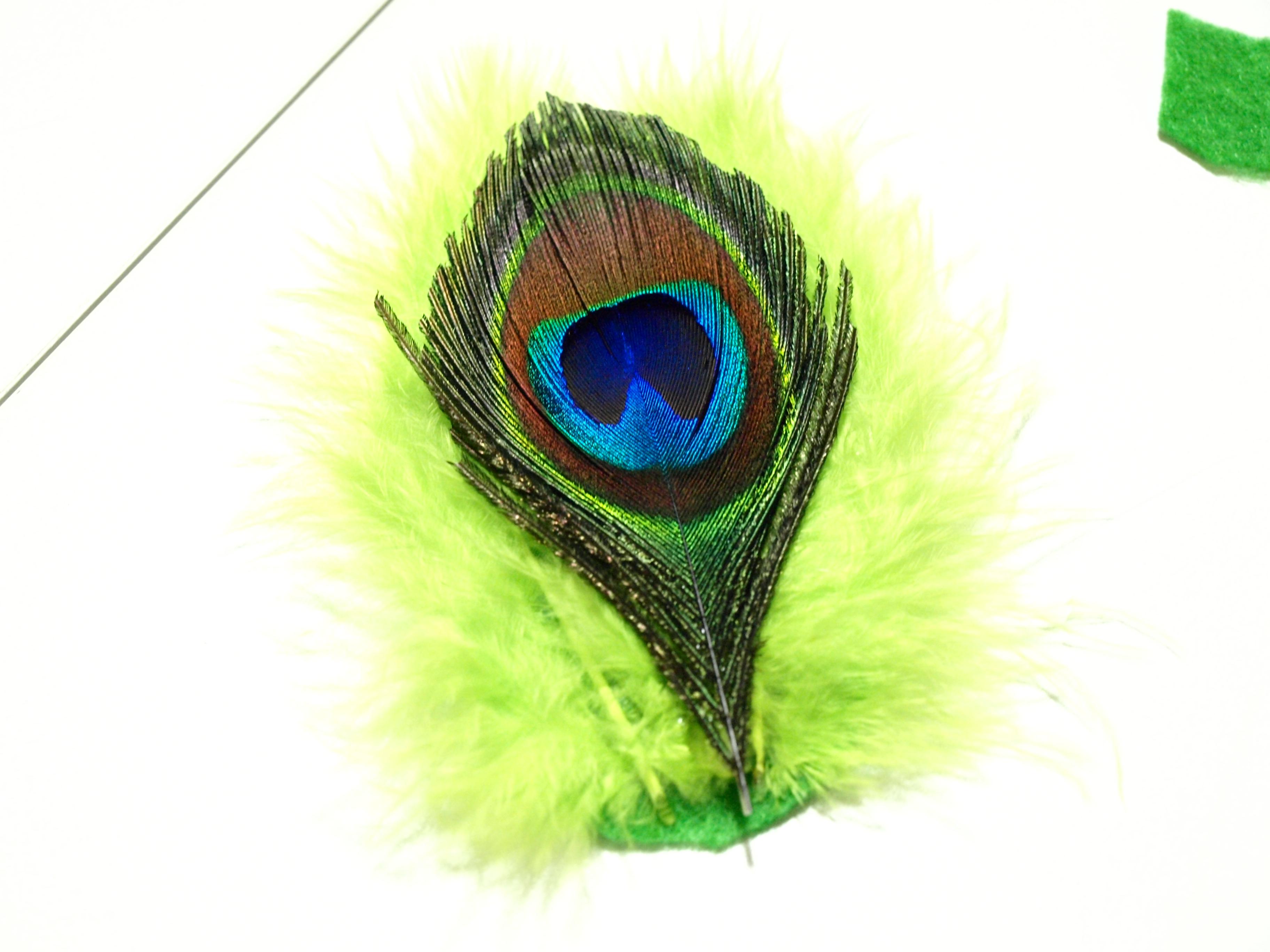 Peacock clipart small Desktop Clipart Peacock Feather High