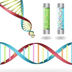 Laboratory clipart dna Information genetic Strand prev and