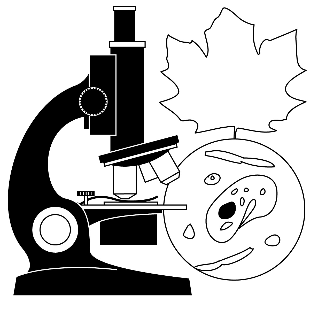 Nature clipart scientist #7