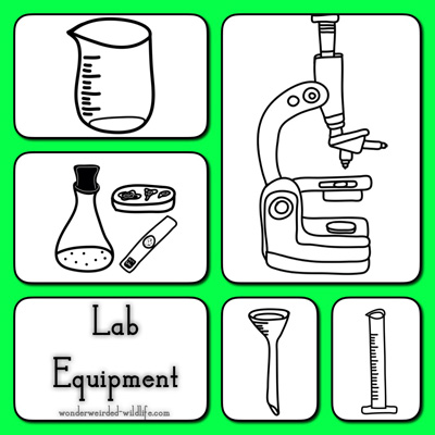 Laboratory clipart science tool #95 clip #15 science Clipart