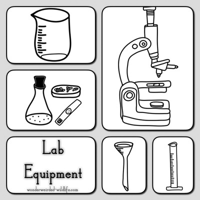 Bio clipart science laboratory Equipment Botany of Gear Different