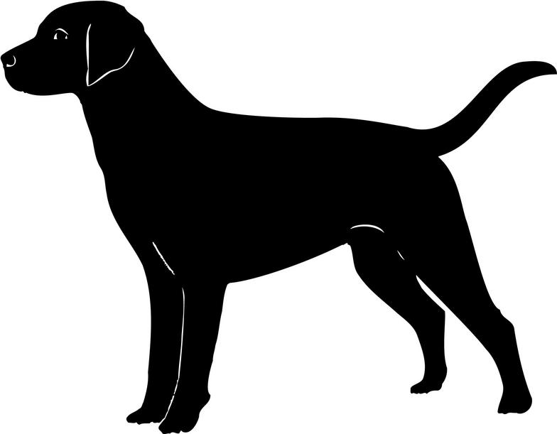 Labrador Retriever clipart Clipart #16 Retriever Labrador drawings