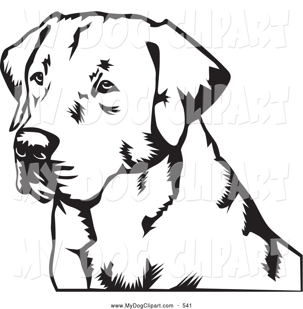 Labrador Retriever clipart Clipart #4 Retriever Labrador drawings