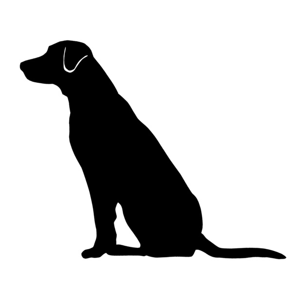 Labrador Retriever clipart Lab Clipart Lab retriever Labrador