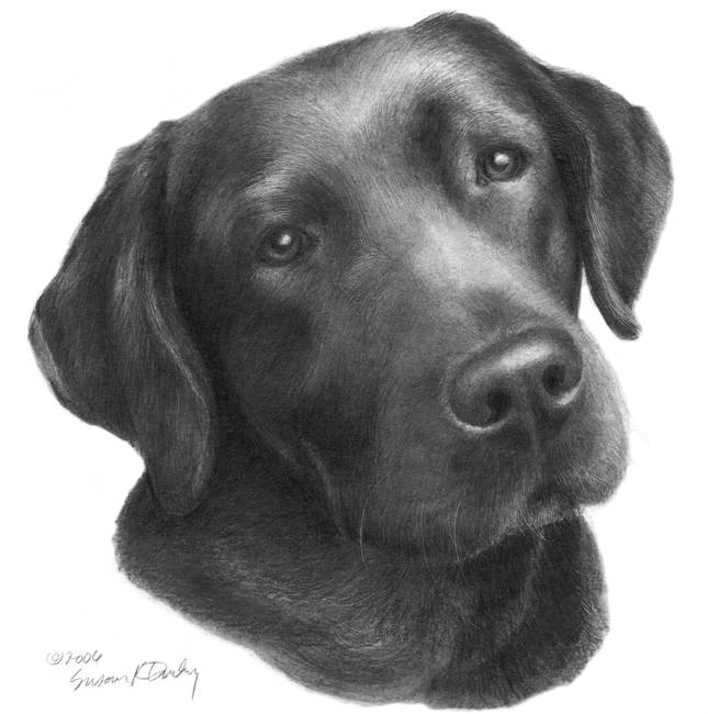 Chocolate clipart pencil drawing Stunning And