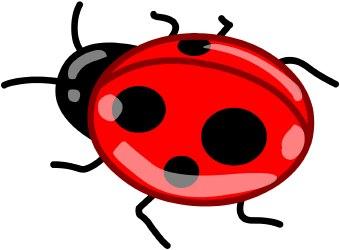 Lady Beetle clipart Clipart clip com ladybug 5