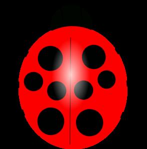 Lady Beetle clipart Clipart Ladybug Clipart Clipart Outline