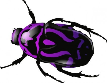 Lady Beetle clipart beatle On Bugs Science 66 images