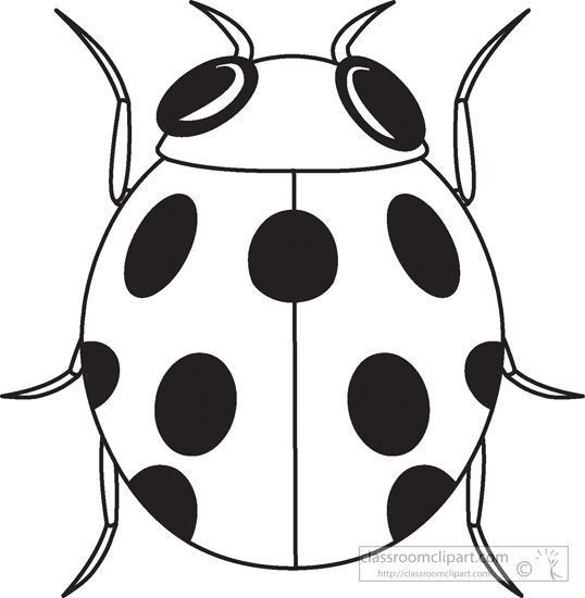 Lady Beetle clipart black and white And outline Ladybug clipart outline