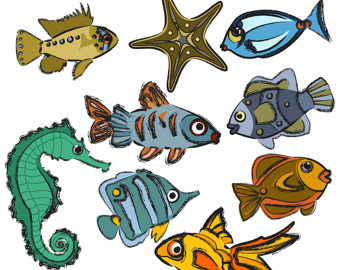 Angelfish clipart sea creature Clipart Goldfish Seahorse Dragonfly Clip