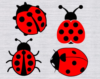 Lady Beetle clipart insect Etsy bundle SVG Lady insect