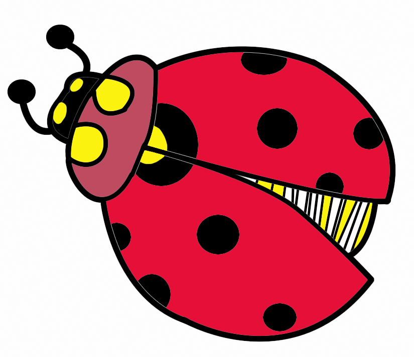 Lady Beetle clipart insect Clipart bug lady insects clipart