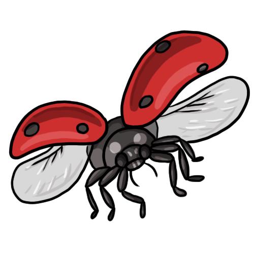 Lady Beetle clipart insect Clip ladybug bug Ladybug lady