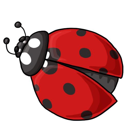 Ladybug clipart Drawings Colorful Clip Images Ladybug