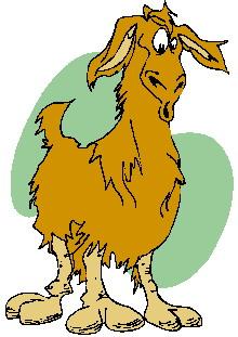 Lama clipart 521276 Art Clip art Lama