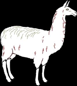 Alpaca clipart black and white Llama clipart clipart black Llama