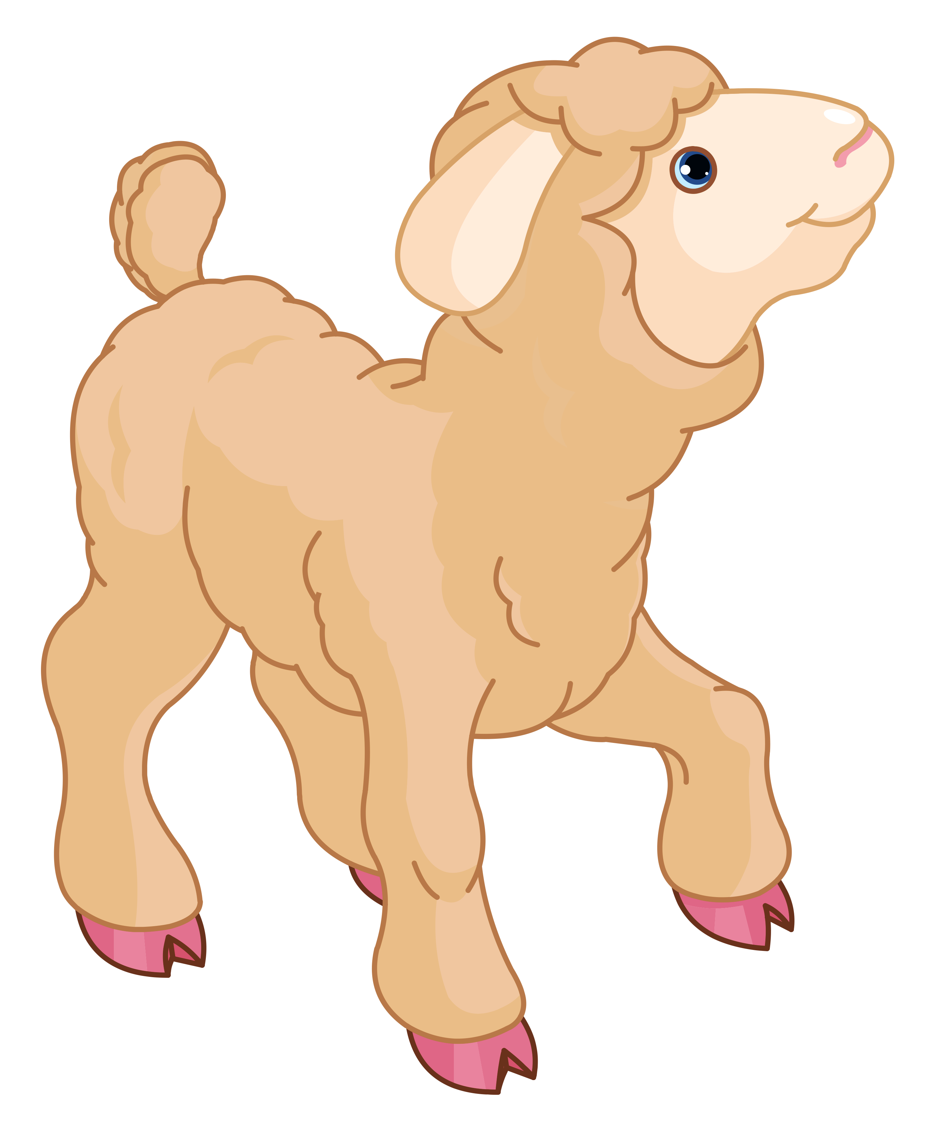 Lamb clipart #15