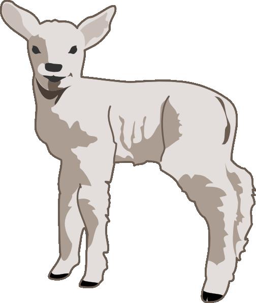 Lamb clipart #14
