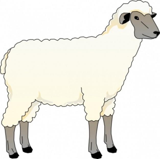 Lamb clipart #4