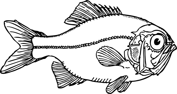 Larger clipart small fish Large Ugly · medium art