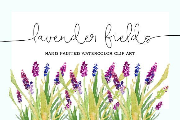 Lavender clipart Watercolor Clip on Lavender Illustrations