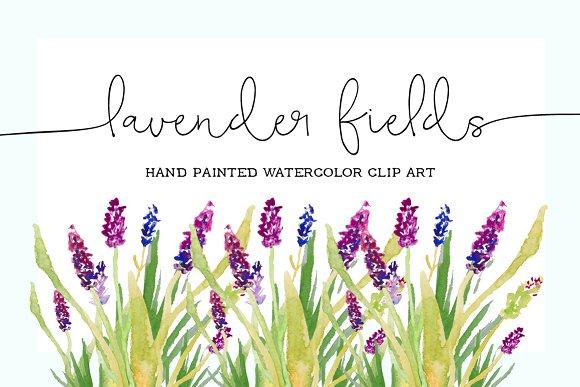 Lavender clipart #10