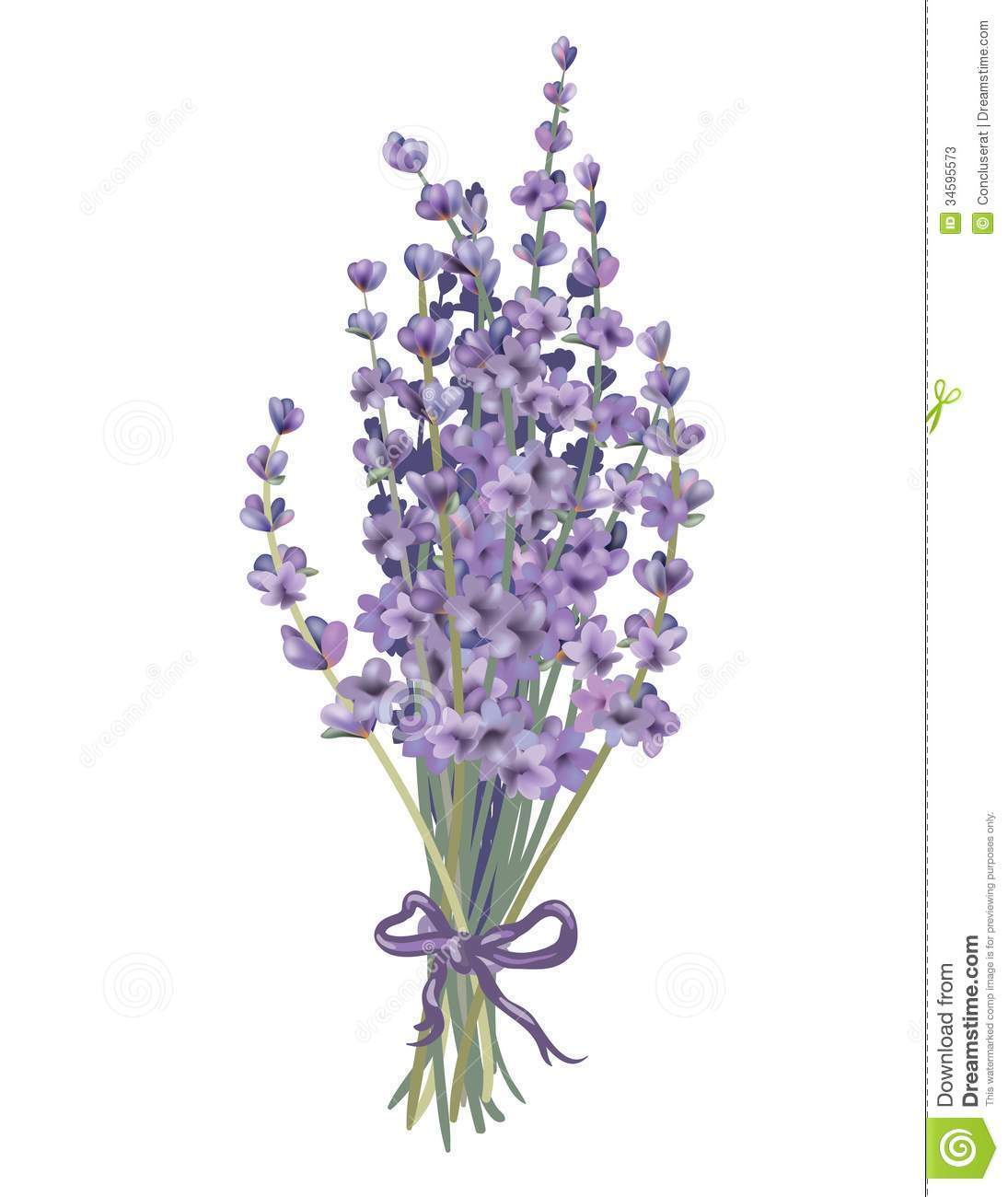 Lavender clipart #1