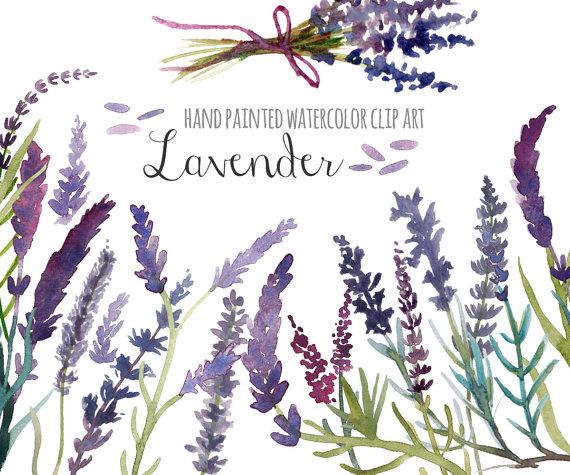 Wildflower clipart crocus Prediseñadas imágenes Purple 28 clip