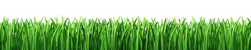 Lawn clipart Clipart Free Clipart Lawn lawn%20clipart