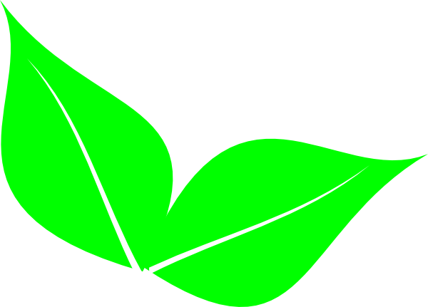 Leaf clipart Clip fall leaf leaves Leaf