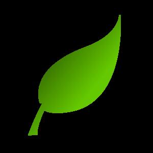 Leaf clipart Clipart leaf  images graphics