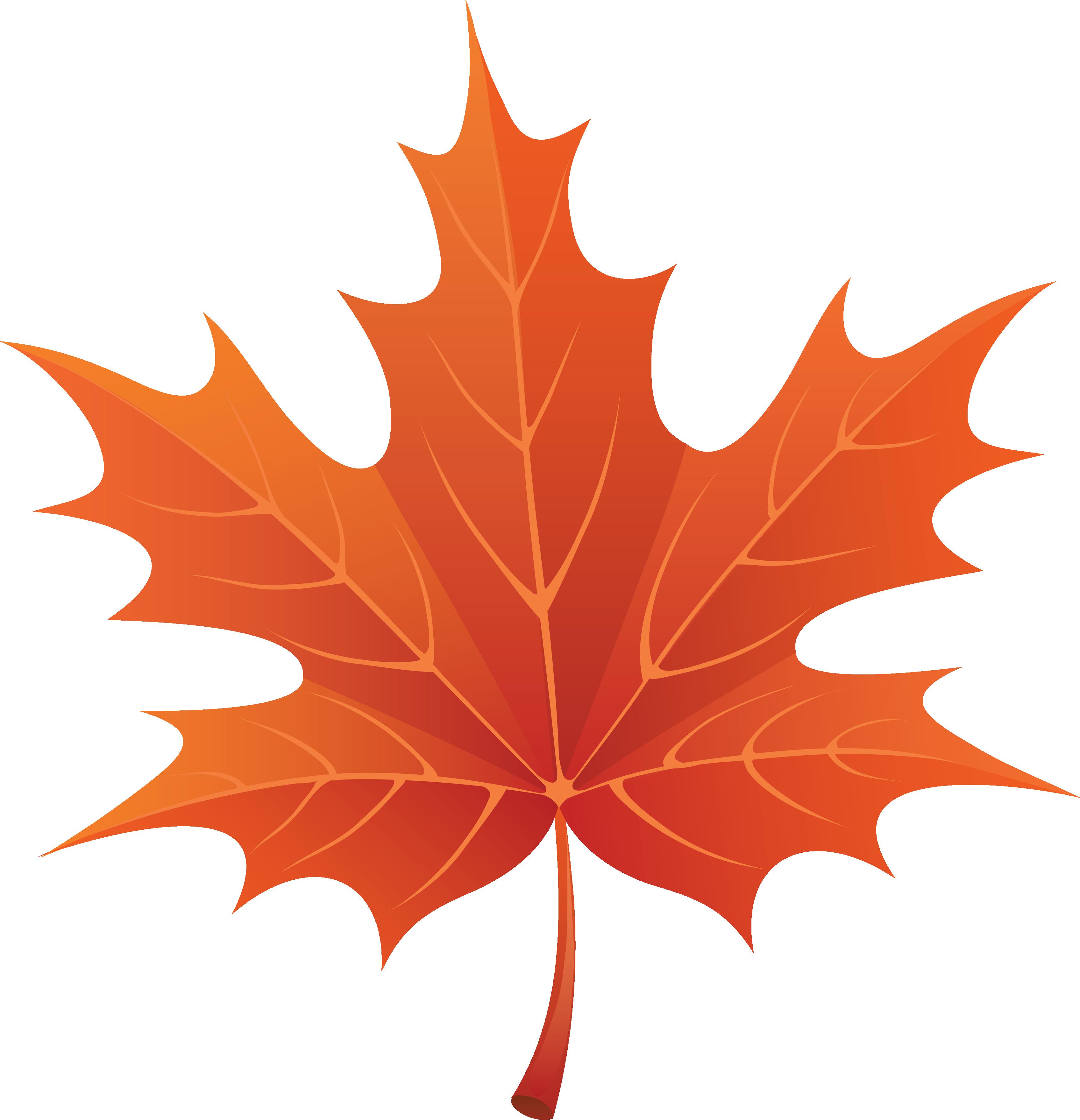 Leaves clipart autumn leaves Leaf Leaf clipart #7 Download