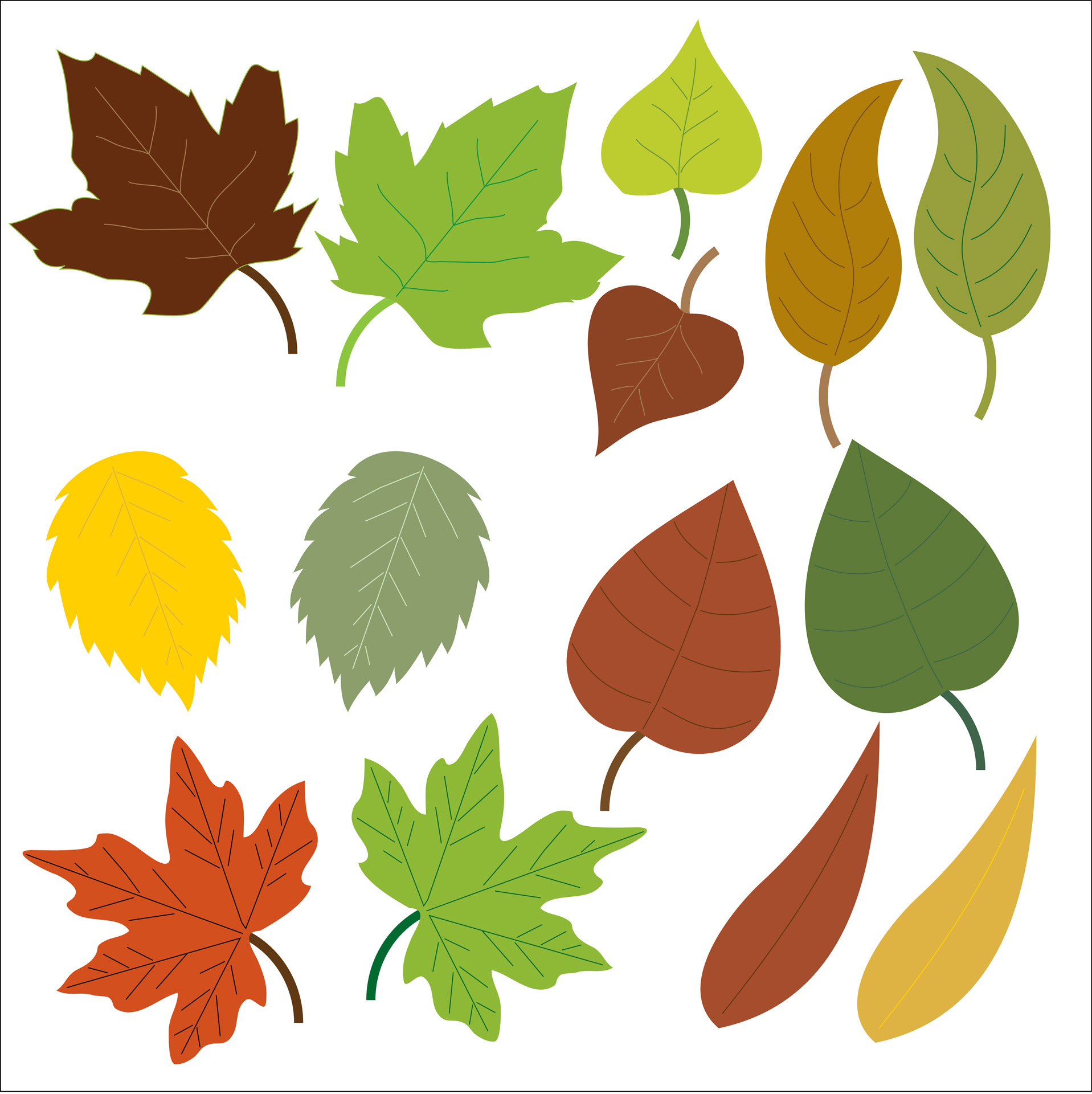 Leaf clipart Photo Free Clipart Stock Clipart
