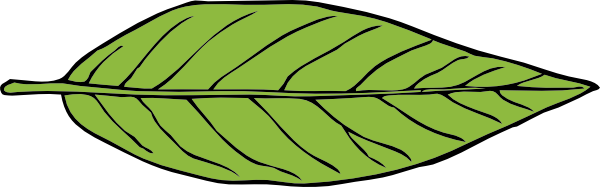 Leaves clipart single Free Clip Green to Domain