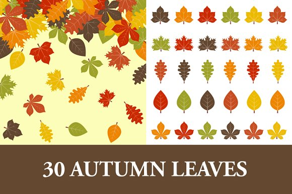 Art Creative ~ Leaves clipart