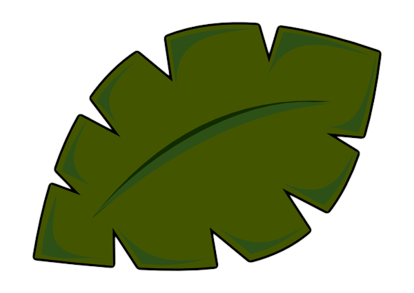 Leaves clipart tropical leaf #6