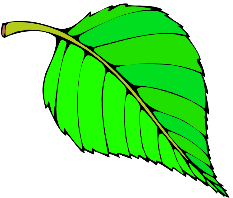 Leaves clipart big leaf Tie Paper Striped Clipart Tree