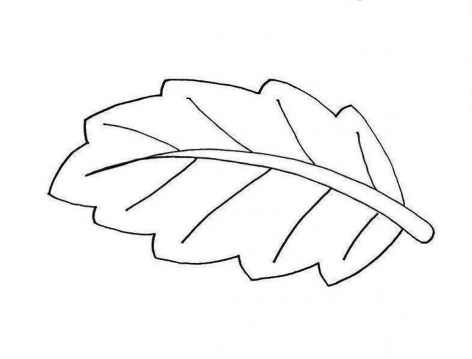 Black & White clipart leaf Pages AZ Pages Pages Tooling