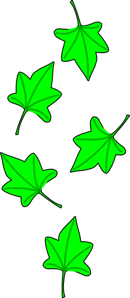 Ivy clipart grape leaves Online Clip com at vector
