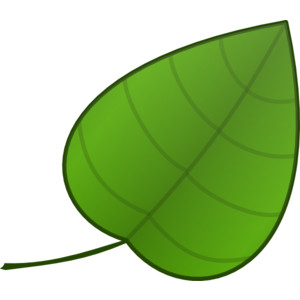 Leaves clipart single Kid clipart green Leaves images