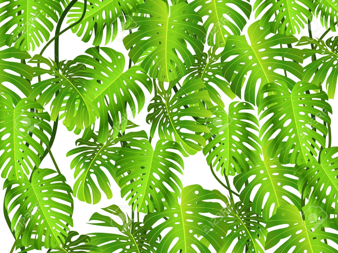 Ivy clipart jungle leaves background Jungle Jungle Clipart Leaf Clipart