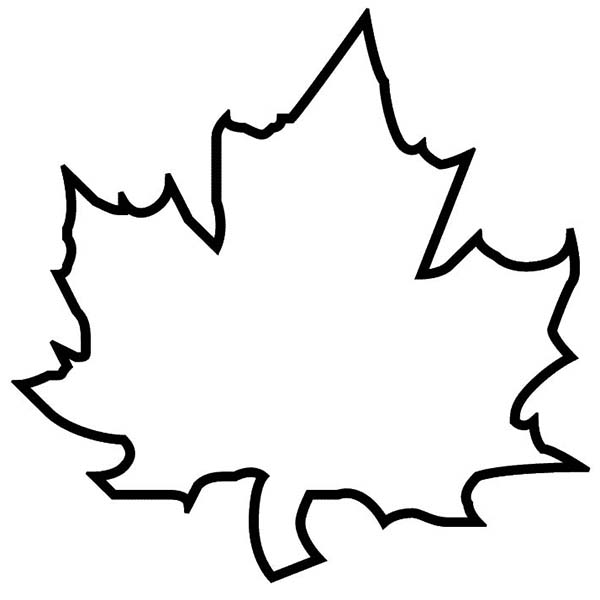 Leaves clipart leaf outline #3