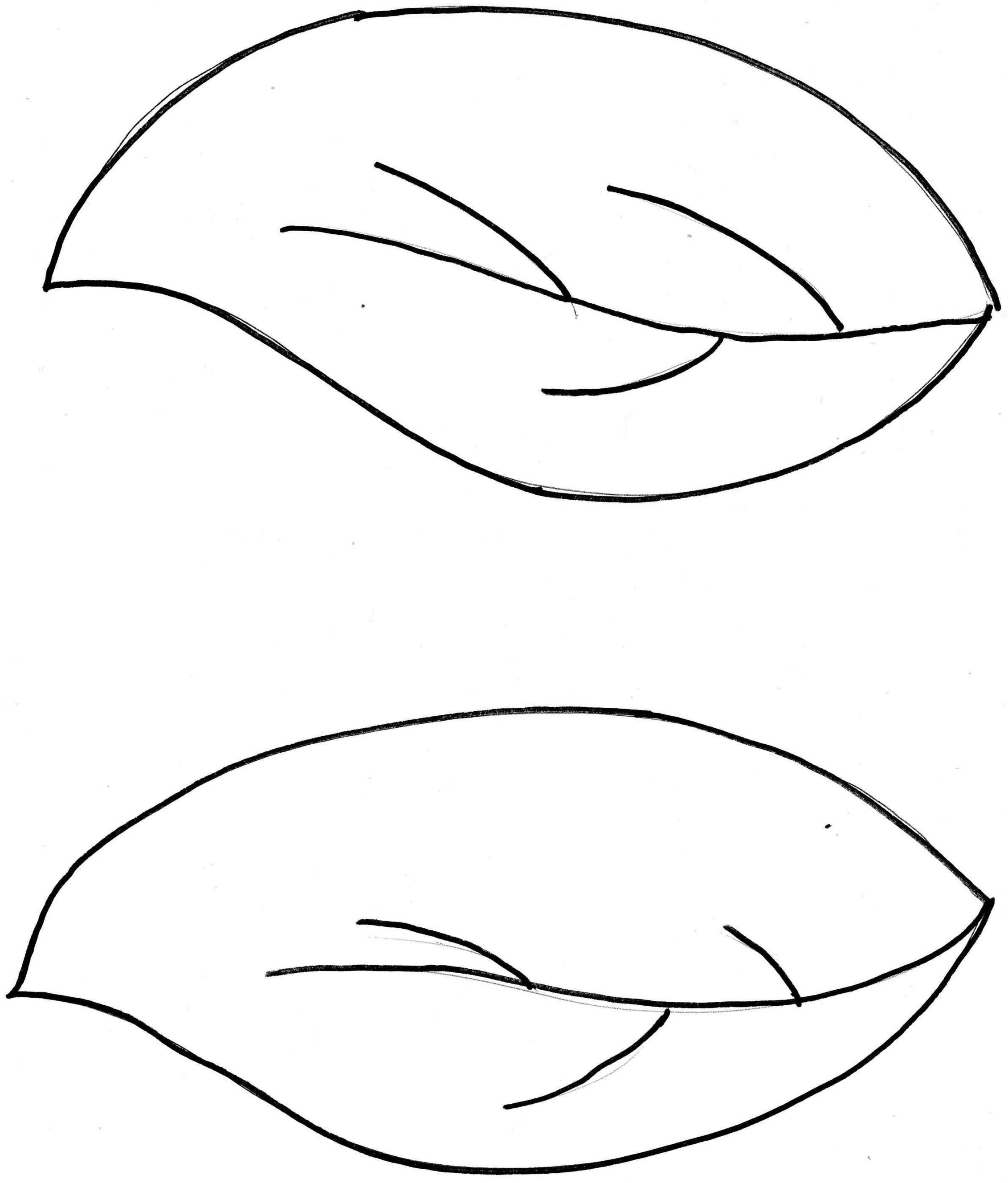 Leaves clipart leaf outline #4