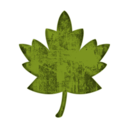 Leaves clipart single Version (Leaves) Maple 1 Clipart